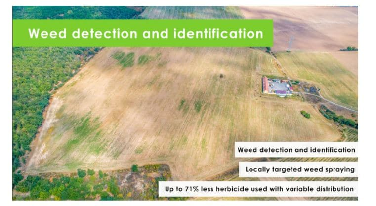 weed-detection